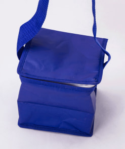 wholesale cooler reusable tote bags 002_02