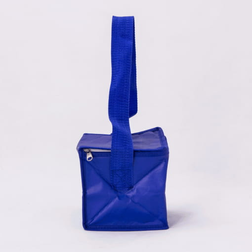 wholesale cooler reusable tote bags 002_04