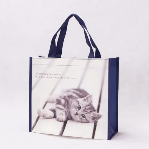 wholesale non-woven laminated reusable tote bags 008_02