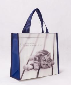 wholesale non-woven laminated reusable tote bags 008_04