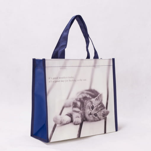 wholesale non-woven laminated reusable tote bags 008_04