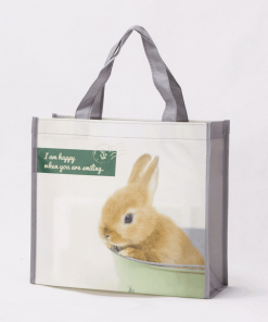 wholesale non-woven laminated reusable tote bags 039_02