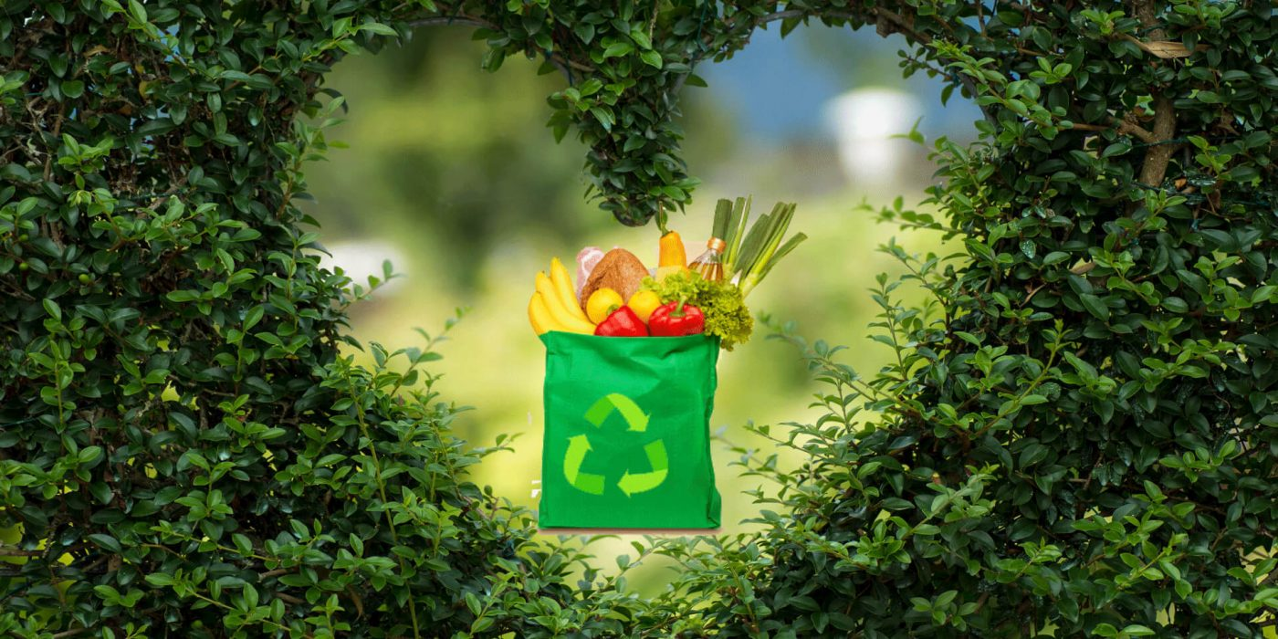 reasons to go green with reusable bags